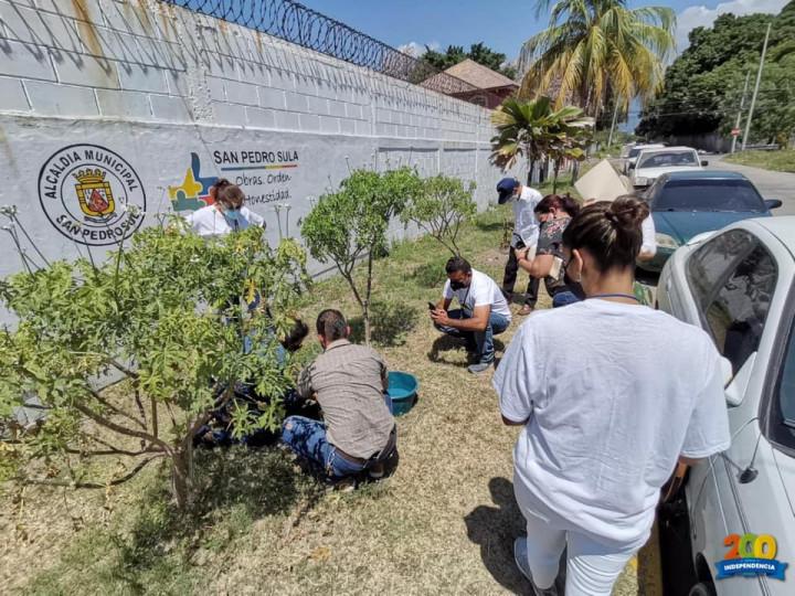 安排貴賓及與會者進行環保日植樹活動