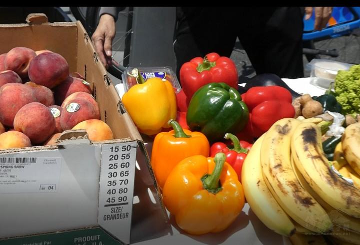 「多徹斯特冰箱」項目週六提供的食物,不但蔬果款式眾多,還都很新鮮。