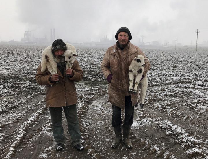 2021年iPhone Photography Awards(IPPA)攝影獎22日公布得獎名單,來自匈牙利的攝影記者克里克斯獲得首獎及年度攝影師,作品拍攝2位衣衫襤褸的牧羊人在肩頭扛著2隻羔羊,旅經看似破敗的工業區,呈現動人的對比。(蘋果公司提供)
