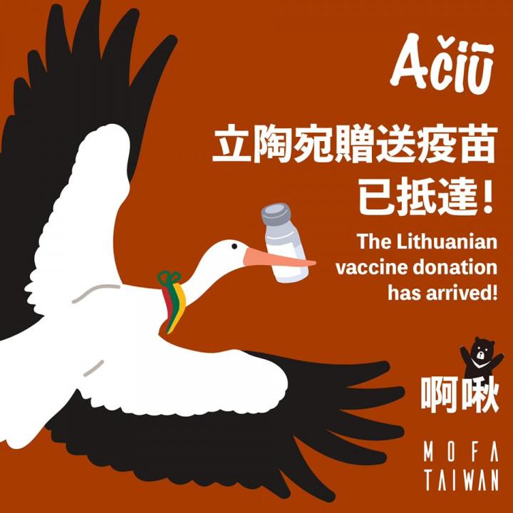 立陶宛捐贈台灣2萬劑AZ疫苗,31日上午由土耳其航空 運抵桃園國際機場。