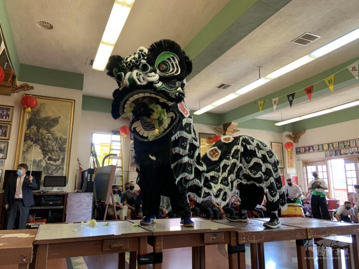 羅省龍岡親義公所舉行醒獅開光暨慶祝建樓72週年紀念祭祖典禮-代表張飛的黑獅單獨表演