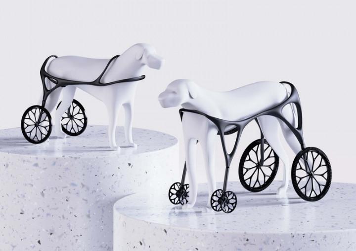 台灣科技大學學生蔡明儒設計具設計感且更環保的3D列印狗輪椅,作品獲德國紅點設計概念獎的最佳設計獎。(台科大提供)