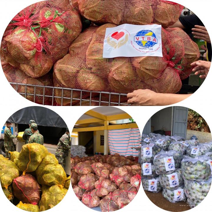 蔬菜運銷通路