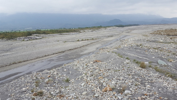 台灣旱象未解,台東池上生態工作者林國欽受訪指出,池上雖是米鄉,但以生態和永續性來看,種植作物應多樣性,不該搶種水稻導致同一時期進入用水高峰,致使農民搶水更嚴重;溪水斷流會導致洄游性魚蝦蟹難以繁衍,超抽地下水讓溼地生態系面臨瓦解危機,對生態衝擊非常大。