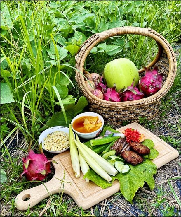以園區摘採的蔬果作物為食材,真正落實從產地到餐桌。(自由時報提供)